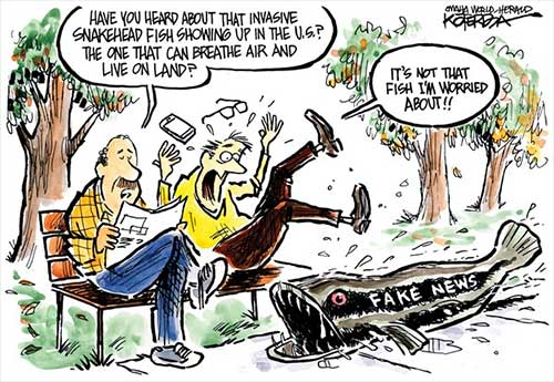 jpg Political Cartoon: Something Fishy